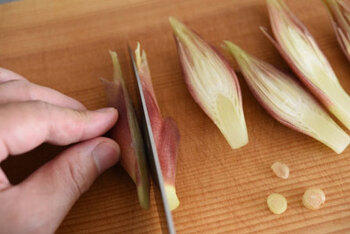 みょうがは乾いた根元を少し切り落とし、縦半分に切ります。鍋に湯を沸かして1分ほど茹でたら、ざるに上げ、全体にうっすらと塩をふりかけ、粗熱を取ります。