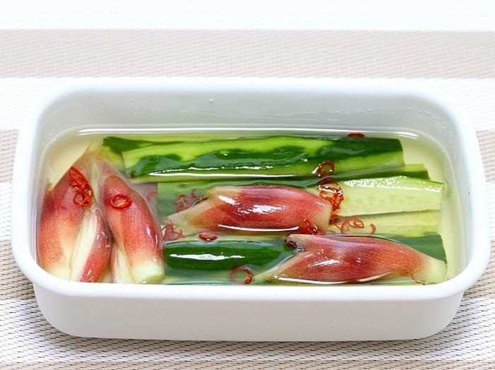 きゅうりとみょうがをピリ辛な甘酢に漬けこんだこちらのレシピは、酸味と甘さが程よい味付けでご飯にもぴったり。彩りも鮮やかで、小皿に乗せて前菜やおつまみにもおすすめです。