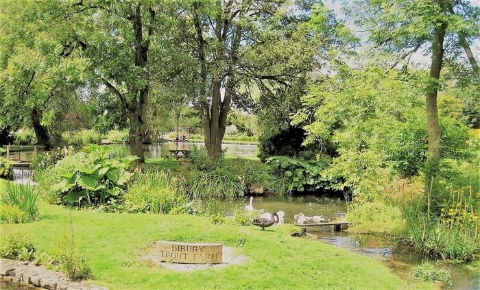 村の中心部を流れるコーン川は水鳥の保護区になっています。ここでは、カモやハクチョウなどの水鳥たちが優雅に泳いでいく姿を見ることもできます。