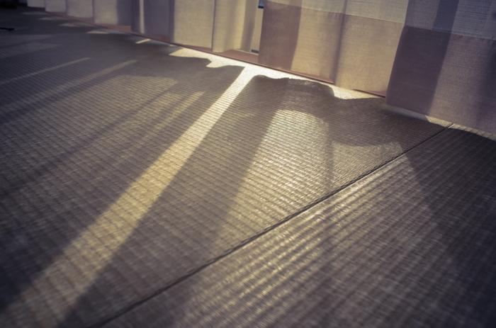 家の中の暑さ対策として代表的なのが、畳の素材として使われる『い草』です。夏の暑い日、和室の畳に寝転がるとひんやり冷たく感じられた経験はありませんか?