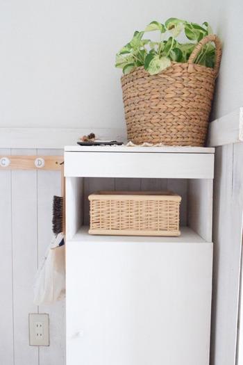 プランターカバーにヒヤシンス素材のナチュラルなバスケットを使うと、お部屋にもなじみやすい上に、軽やかな印象が夏にぴったり。専用のプランターカバーを使わなくても身近なアイテムで植物を飾るのも素敵♪