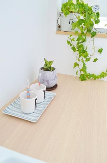 アイビーやポトスのようなツル性の植物をプランターから垂らして飾るのもおすすめです。段差があるところに置くと、どんどん垂れてくる様子を楽しめます。洗面所などの水回りに飾ると、フレッシュな印象の空間になりますよ♪