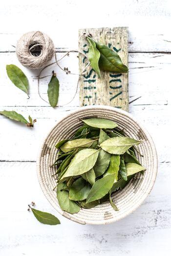 日本では月桂樹(ゲッケイジュ)の葉でおなじみのローリエ。甘い香りとほのかな苦味が特徴。フレッシュの葉は、すっきりした芳香ですが、乾燥させると強い香りになります。 肉や魚の臭み消しとして使われることが多く、シチューやカレーなどの煮込み料理で重宝します。
