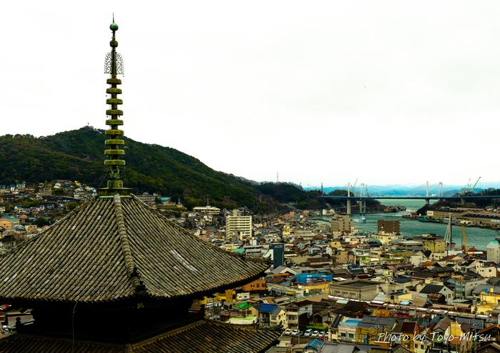 坂の道としても有名な広島、尾道はノスタルジックな街並みに猫たちが集う素敵な猫の街です。招き猫美術館や猫グッズのお店なども展開され、街をあげて猫を大切にしているのがよく分かります。