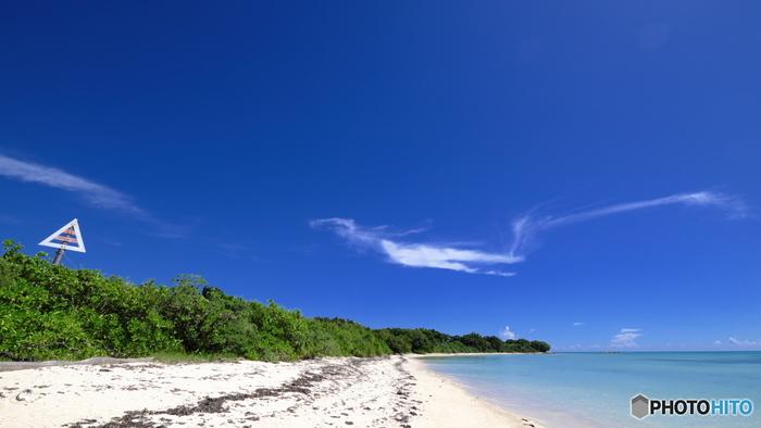 沖縄県竹富島のコンドイビーチは猫が多く集う海岸として有名です。竹富島は石垣島から高速船で約10分ほどの距離にある八重山諸島にある離島です。青い海と青い空が広がり、いつまでものんびりと休日を過ごしていたくなります。