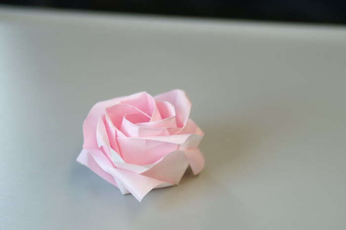 華やかなお花の代表といえば、バラです。少し複雑ですが、折り紙で素敵なバラが作れちゃうんですよ!