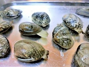 アサリやしじみなどの貝類は比較的足が早い食材ですが、しっかり砂抜きをした後に、小分けに冷凍保存が可能です。使う際も解凍せずそのまま使えるので一石二鳥の裏技です。どちらも冷凍保存は約1ヶ月!色々お料理に使えるのでこれは冷凍しなきゃ損ですよ。