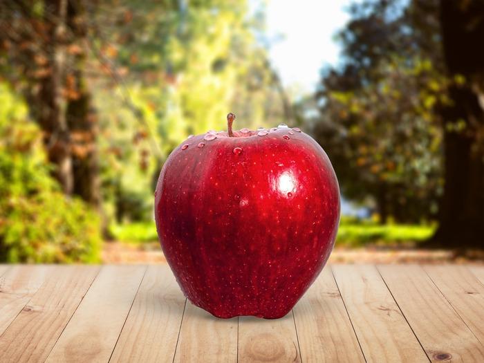 【りんごの収穫は夏から始まり、秋から春にかけて出回りますが、旬は概ね秋から冬にかけて。】