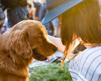 この子とならきっと大丈夫。毎日を一緒に過ごしたい、小さくて癒される動物たち
