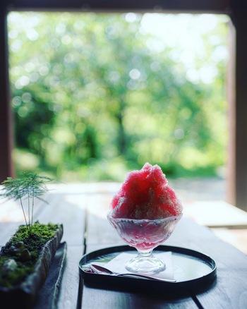 暑い夏を上手に乗り切るために食べたいかき氷。普段からミネラルウォーターや牛乳水を凍らせておけば、欲しいときにさっと作れます。食欲のないときも栄養価の高い果物をたっぷり使っておやつに取り入れたいですね。果物もフレッシュなものと凍らせたものを用意しておけば食感も楽しめそう。ぜひ、色々作ってみてくださいね。