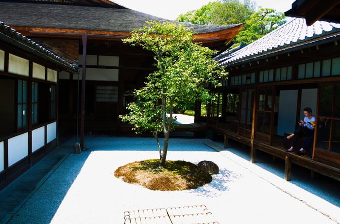 〇△☐乃庭は、2006(平成18)年に造られました。〇:水(木)、△:火(庭の隅の形状)、☐:地(井戸)を表し、宇宙の根源的な形態:〇△☐で、禅宗の四大思想(地水火風)を象徴したそうです。