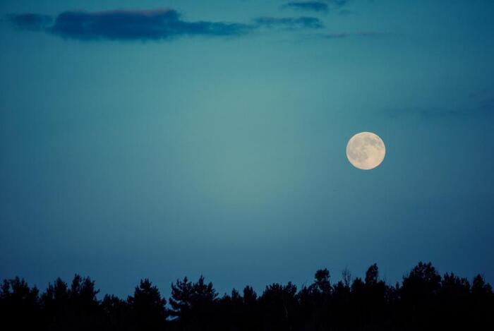 新月・上弦の月・満月・下弦の月。月のリズムはこの4つの工程から成っています。新月から満月までが「アクティブ期」で、満月から新月までが「デトックス期」と覚えておきましょう。