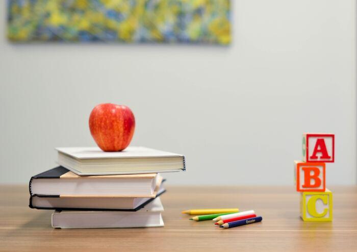 語学留学はその名の通り、語学を学ぶための留学。レベル別にクラスが分かれていることが多く、英語初級者の方でも通いやすいのがメリット。 TOEIC/TOEFL対策コースや、大学への進学準備コース、ビジネス英語コースなどが人気です。文化体験や観光が組み込まれているプログラムもあり、同世代の参加者と一緒に観光や文化体験を経験できるので、楽しさも倍増です。