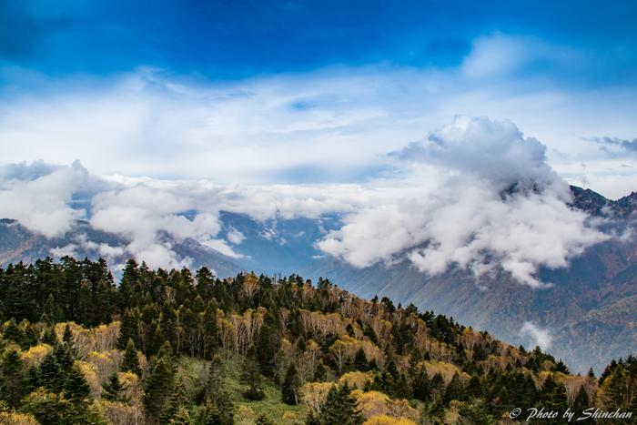 その一方で、日本一の市町村面積を誇る高山市は、飛騨山脈の麓に位置しており、市街地中心部から少し足を延ばすと新穂高ロープウェイなどを使って雄大な北アルプスが魅せる大自然を眼前に臨むことができます。