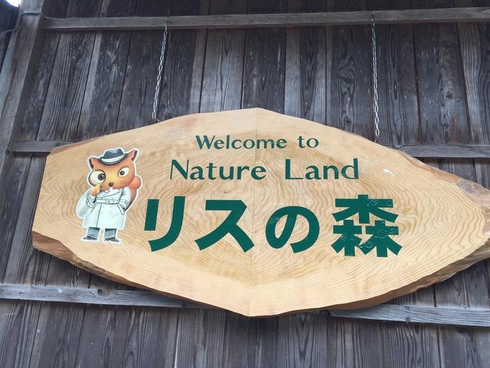 高山市中心部から少し南に位置する源氏岳に位置するリスの森飛騨山野草自然庭園とは、シマリスをはじめ、ニホンリス、タイワンリスなど様々なリスたちとふれあいを楽しむことができる施設です。