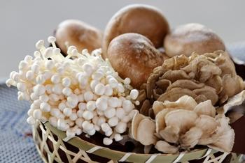 低カロリーのキノコには、栄養が入ってなさそう……と思っていませんか? キノコには、ビタミンDやビタミンBのビタミン類、カリウムやリン等のミネラル類が多く含まれています。 食物繊維も豊富で、腸の中で膨らむので、少量でも満腹感を感じやすいのも嬉しいポイント。