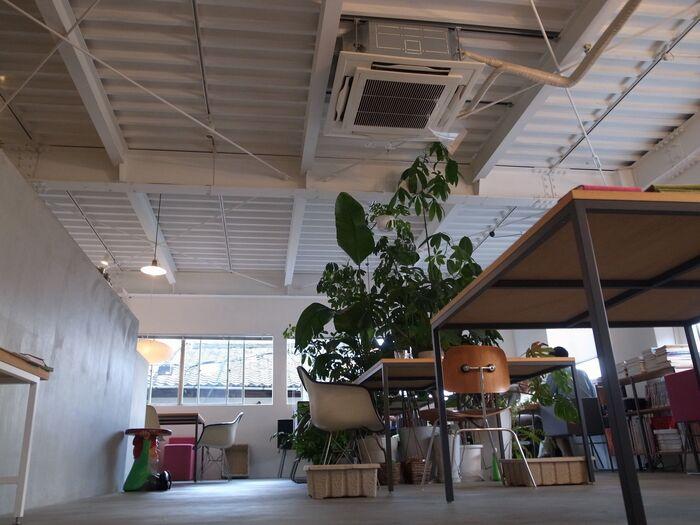 二条城近くにあるスタイリッシュなカフェ「ソングバードコーヒー」。オーナー自らデザインした家具のショールームやギャラリースペースも併設している、インテリア好きさんやオシャレさんにはたまらないお店です。