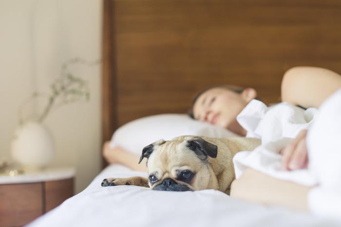 睡眠は身体を休ませるだけでなく、無意識のうちに頭の中を整理する役割も担っています。6~8時間ほどの質の良い眠りは、その日に蓄えた余計な情報を削ぎ落し、ストレスによる混乱状態を一旦リセットしてくれる何よりの栄養剤です。就寝前にはゆっくりお風呂に浸かってリラックスしたり、脳へ刺激を与えないようスマホやパソコンを遠ざけるなど、心地のいい眠りを得るための準備をできるだけ整えましょう。