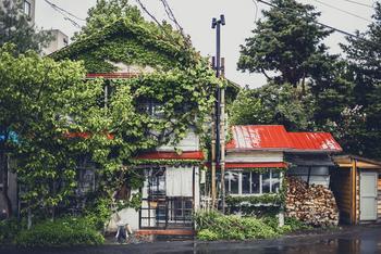 赤い三角屋根が目印の札幌のコーヒーといえば真っ先に名前があがる「森彦」。昭和レトロな店内は、毎日の忙しない気持ちをそっと落ち着けてくれます。
