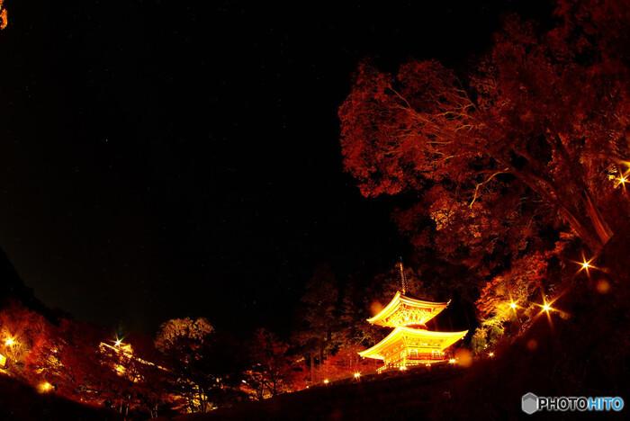 勝尾寺では、紅葉の季節になると夜間のライトアップも施されます。漆黒の闇夜を背景に、光を浴びた多宝塔、モジミの樹々などが鮮やかに浮かび上がる様は幻想的で、いつまで眺めていても飽きることはありません。