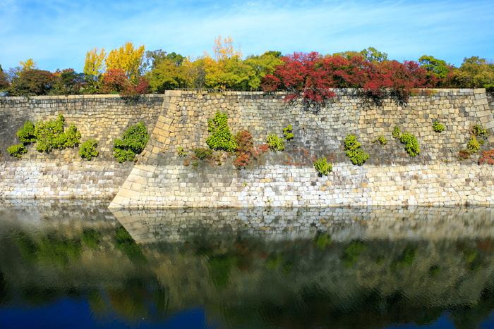 大阪城公園では、大阪城のお濠も必見です。整然と積まれた石垣の上から顔を覗かせるように落葉樹の樹々が彩っている様を、波ひとつない静かなお濠の水面が鏡のように映し出す様は絵になり、思わずカメラに収められずにはいられない程です。