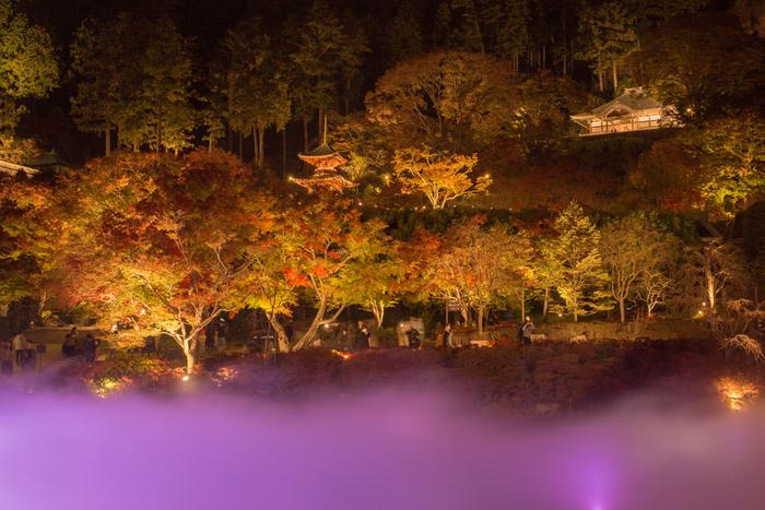 錦繍の秋に魅せられて…近畿地方での紅葉の名所を訪れよう【大阪府北部編】