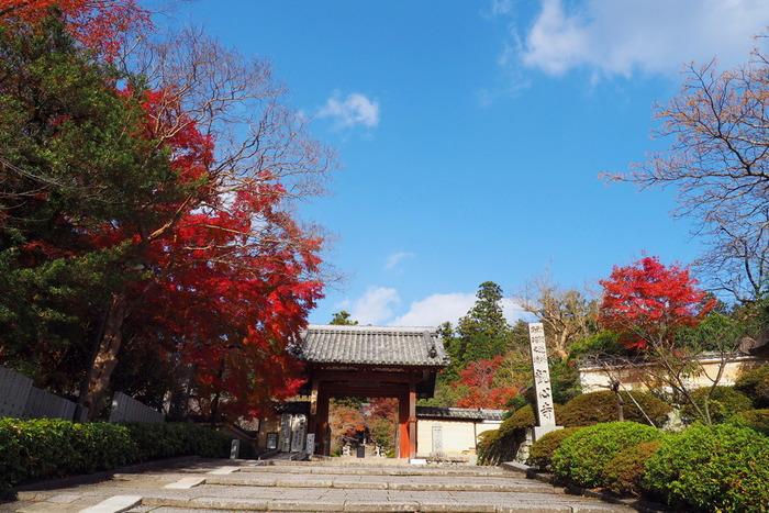 観心寺は、伝承によると701年に修験道の開祖者、役行者によって開祖され、その後、空海(弘法大師)によって再興された真言宗の寺院です。観心寺には、国宝に指定されている金堂をはじめ、様々な重要文化材が安置されています。