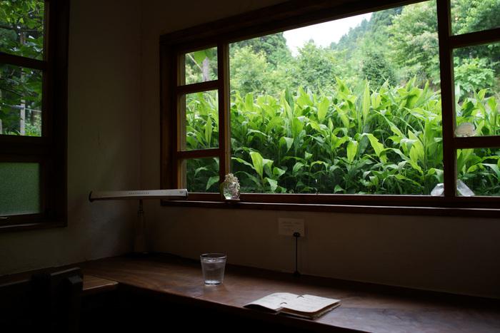 福島のメインエリア【いわき市】スローな時間が流れる「おしゃれカフェ」