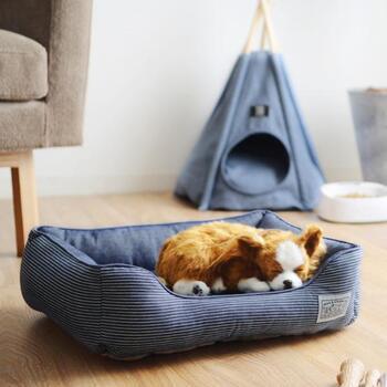 """お部屋の中に専用の居場所があれば、ワンちゃんもネコちゃんも安心できるはず。夏は暑さも心配なので、ペットベッドは""""ひんやり素材""""の物がおすすめです。"""