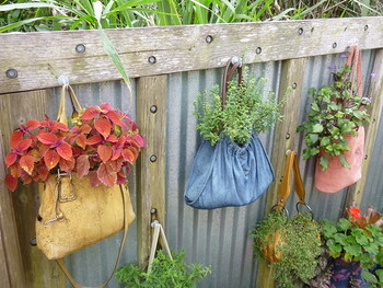 なんと、使わなくなったバッグにグリーンを植えるというユニークなアイデア。見ているだけでワクワクするようなオリジナリティあふれる飾り方ですね。