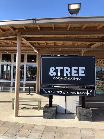道の駅「木更津 うまくたの里」にあるレストランカフェ「&TREE(アンドツリー)」は、地元で大人気の「のうえんカフェ」とバウムクーヘン専門店「せんねんの木」がプロデュースしたことでも注目されています。