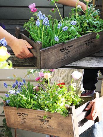 全て100均のアイテムで作れるオールドボックスは、お庭やベランダを一気におしゃれにしてくれます。オイルワックスや転写シールでヴィンテージ風のオールドボックスに。深い色合いは、植物を引き立ててくれるので、さまざまな寄せ植えを楽しんでみましょう。