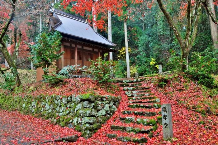 「鶏(にわとり)の足の寺」という少し風変りな名前を持つ鶏足寺は、長浜市に位置しており、もともとは奈良時代に行基によって開基された真言宗の寺院です。しかし、1933年に寺院が焼失した後は、寺院としての使命は終わり、廃寺となり、現在は地元住民によって管理されています。