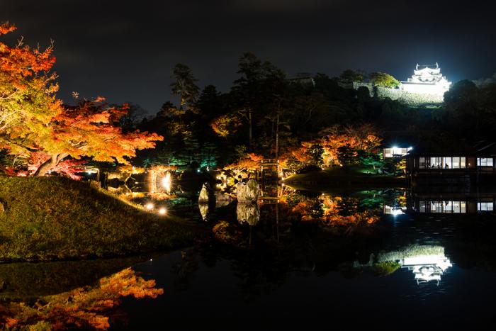 夜間ライトアップされた玄宮園から眺める彦根城も必見です。闇夜を背景に、ライトを浴びて白亜の天守が白く浮かび上がる様は幻想的で、夜の玄宮園の魅力を引き立てています。