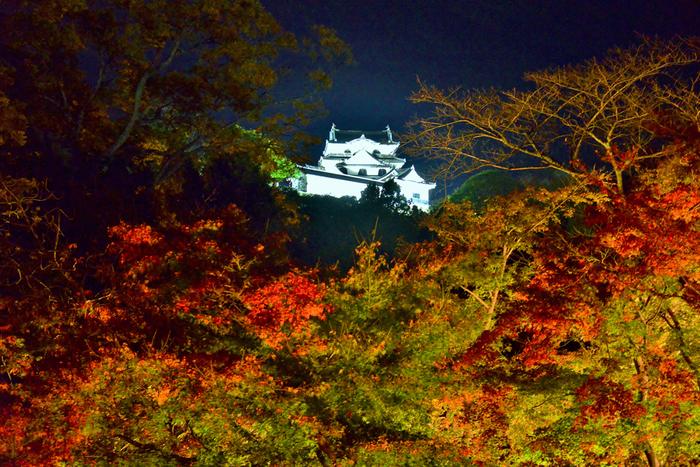 錦繍の秋に魅せられて…近畿地方での紅葉の名所を訪れよう【滋賀県編】