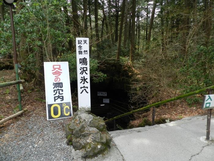 国の天然記念物として1200年以上前から存在する溶岩洞窟「鳴沢氷穴」。貞観6年(864年)、富士山の側火山長尾山の噴火の際、溶岩流が流れ下ってできたのがこの洞窟です。
