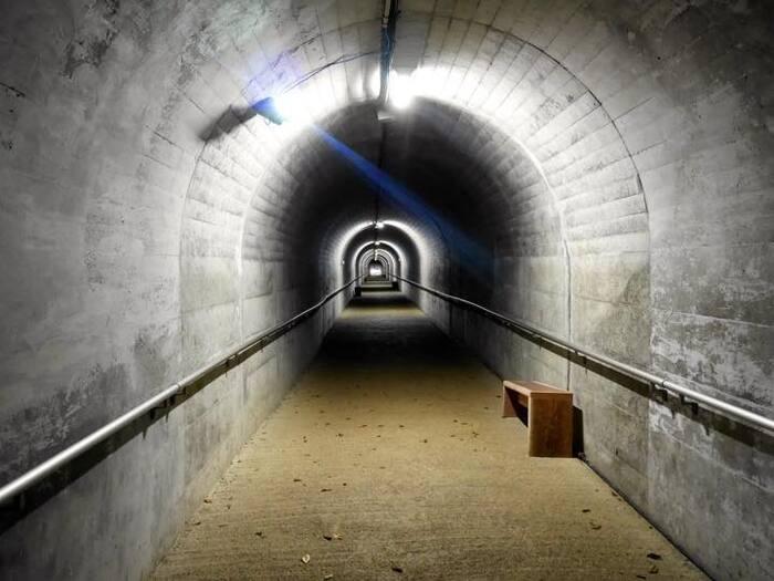 入り口から120mほど続く無機質なトンネルが冒険気分を盛り立ててくれて、洞窟に入る前からワクワク、ドキドキさせられます。まだだれも足を踏み入れたことがない未知の領域もあるという不二洞ですが、洞窟内はライトアップされているので安心です。