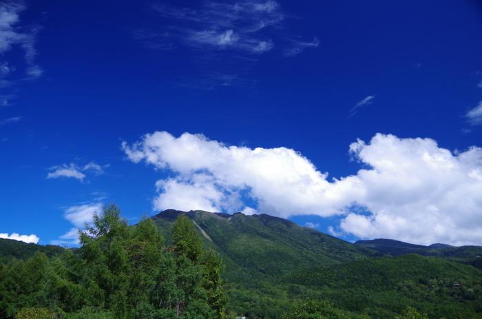 原生林や高山植物など手つかずの自然に出会える蓼科高原。緑が美しい八ヶ岳連峰を望むこともでき、青い空とのコントラストはハッと息をのむ美しさ。