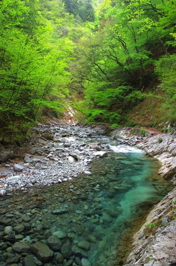 滝と原生林が織り成す神秘的な美しさで、「平成の名水百選」や「森林浴の森百選」などに数えられる自然の宝庫「西沢渓谷」。澄み切ったブルーの川の流れに心が洗われます。