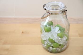 梅シロップは青梅を氷砂糖に漬けて1~2週間で出来上がります。その後、梅を漬けたままにしておくと渋みが出たりカビの原因になったりするため、梅は取り除いて別の容器に保存しておきましょう。 漬けて2~3週間後には取り出してOK。1ヵ月半ほど経ってシロップに色が付いてきたらそれ以上は入れたままにしておかないで。