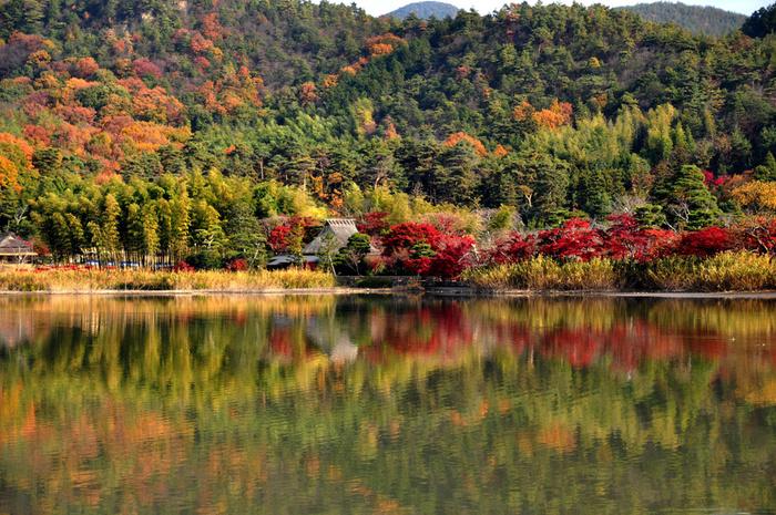 西行法師、松尾芭蕉、与謝蕪村といった数々の歌人によってその美しさを歌に詠まれている広沢池は、周囲約1.3キロメートルで、「日本のため池100選」にも選定されている美しい池です。湖畔には、カエデ、サクラなどの落葉樹が植樹されており、晩秋になると静かな水面が、湖畔の美しい風景を映し出す幻想的な景色を臨むことができます。