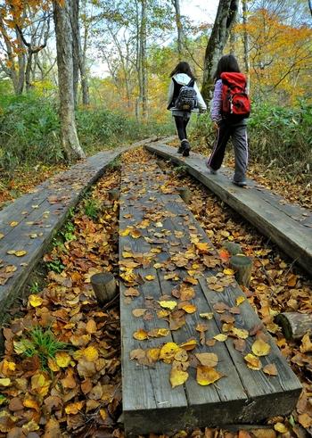 登山道の中には狭い場所も。山道で人とすれ違うときは、登っている側が山側によけて待ちます。誤ってぶつかって、転落することなどを防ぐためです。