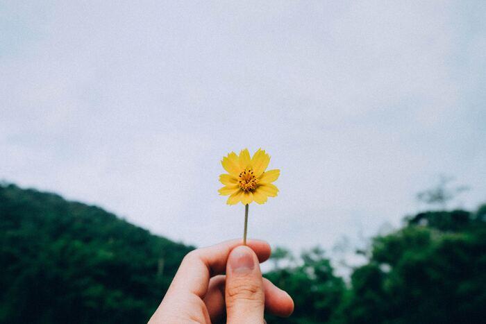 """時間をおいても、友人からのアドバイスを受けても「後悔する」と思ったなら、気が済むまで理想を追求しましょう。未練があるまま諦めてはその後の人生にしこりが残ってしまいます。「やりきった!」と言えるくらいまで頑張って、それでもダメなら潔く諦めればいいのです。""""やらない後悔""""という後味の悪い後悔は、これでグッと減るはずですよ。"""