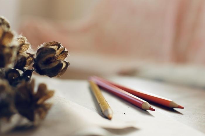 好きな絵柄のぬり絵ブックと、きれいな色鉛筆は見ているだけでもうっとりしてしまいますね。大人のぬり絵は気が遠くなるほど繊細な絵柄が多いので、一気に仕上げるのは大変。ちょっとづつ気長に…とリラックスして楽しみたいですね。