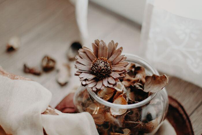 """野の花から始める""""花のある暮らし""""。4ステップで簡単♪《ドライフラワーの作り方》"""