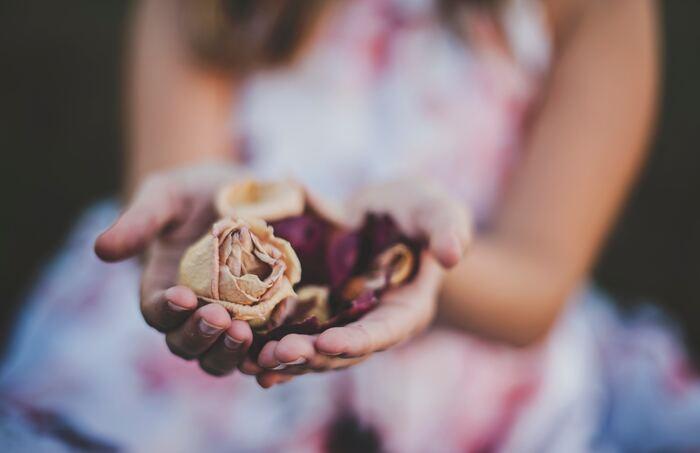 花びらが薄いものは、乾燥する過程で花びらがくるくると丸まってしまい、美しいシルエットになりません。バラや紫陽花など、花びらに厚みがあるものを選ぶのがおすすめです。