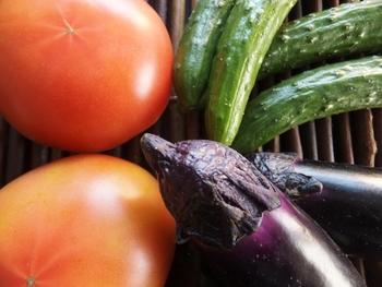田舎や近所の人からおすそ分けでいただいたり、家庭菜園でたくさん出来たトマト、きゅうり、ナスのレシピ。安く美味しい野菜が手に入ったらぜひ気になるレシピをためしてみてはいかがでしょうか。