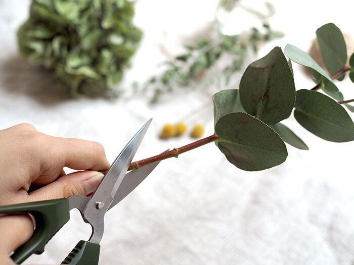ドライフラワーにしたい花やグリーンを吊るしやすい長さにカットします。カットはあとからでも可能なので、迷う場合は少し長めにしておきましょう。少し勿体無い気もしますが、一番生き生きと咲いている時にドライにすると、色の出方や持ちが良くなります。