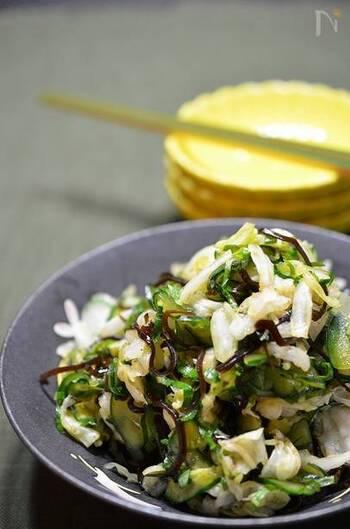 常備菜や箸休めにぜひ作っていただきたいのが、「簡単キャベツのもみもみ」レシピ。塩昆布を使うので、味付けに迷うこともありません。青じその爽やかな風味が効いた和風サラダです。