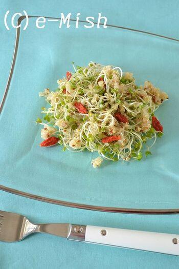ブロッコリースプラウトとキヌアで作る栄養満点なサラダ。キヌアのおかげで食べ応えもあります。クコの実の赤色がアクセントになって、おしゃれな一皿に。